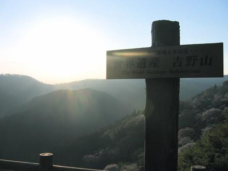 yoshino1.jpg
